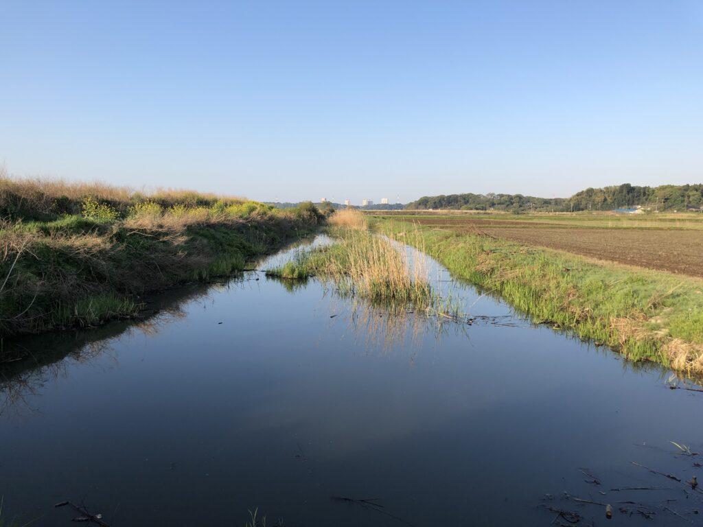 印旛沼水系農業用水路