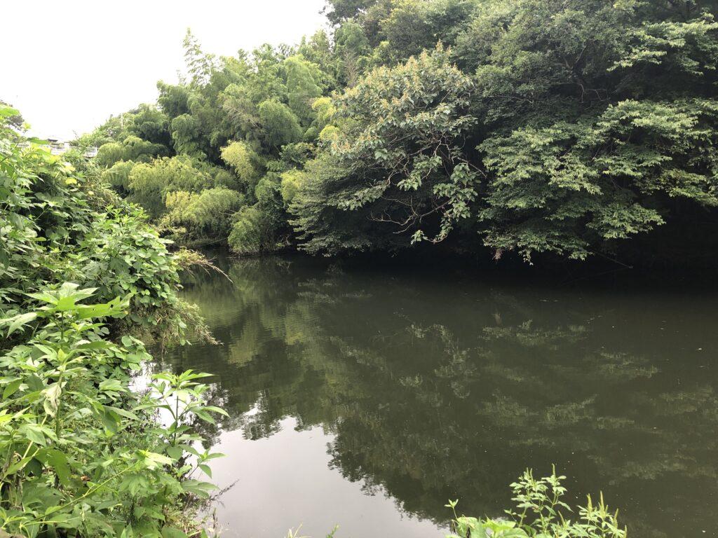 花見川の釣りスポット